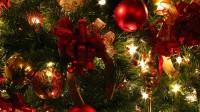 100 Best Christmas Gifts for Moms of 2017  Dodo Burd